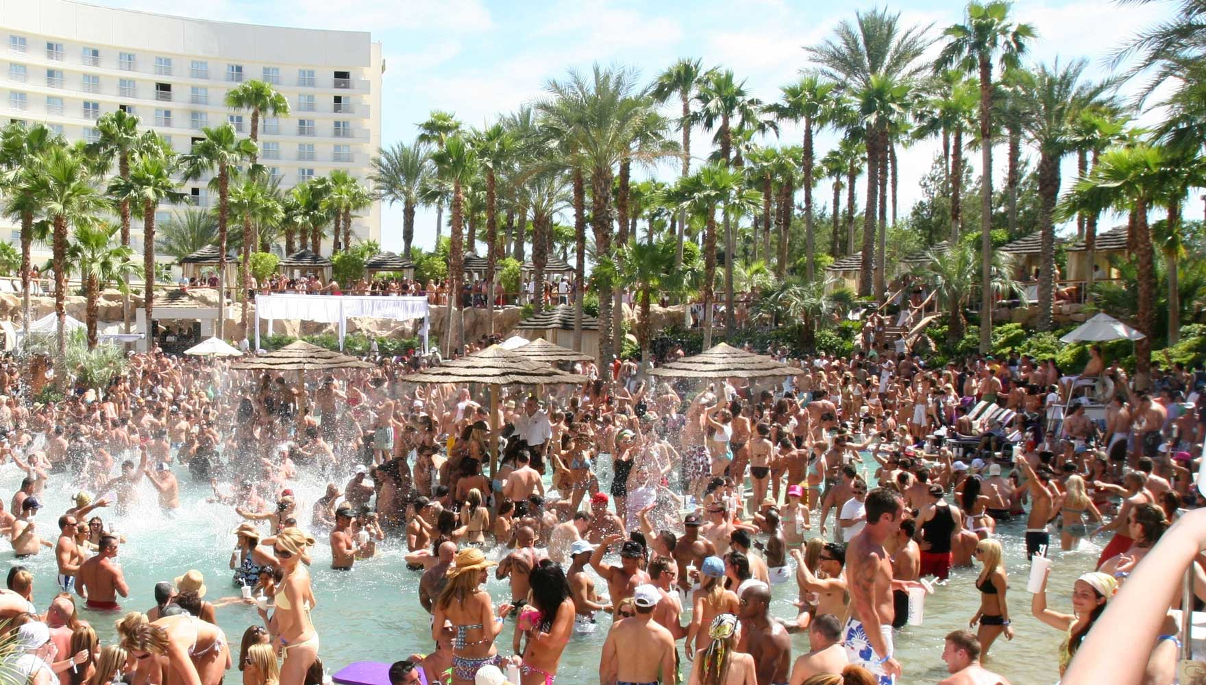 Las Vegas Pool Parties banner